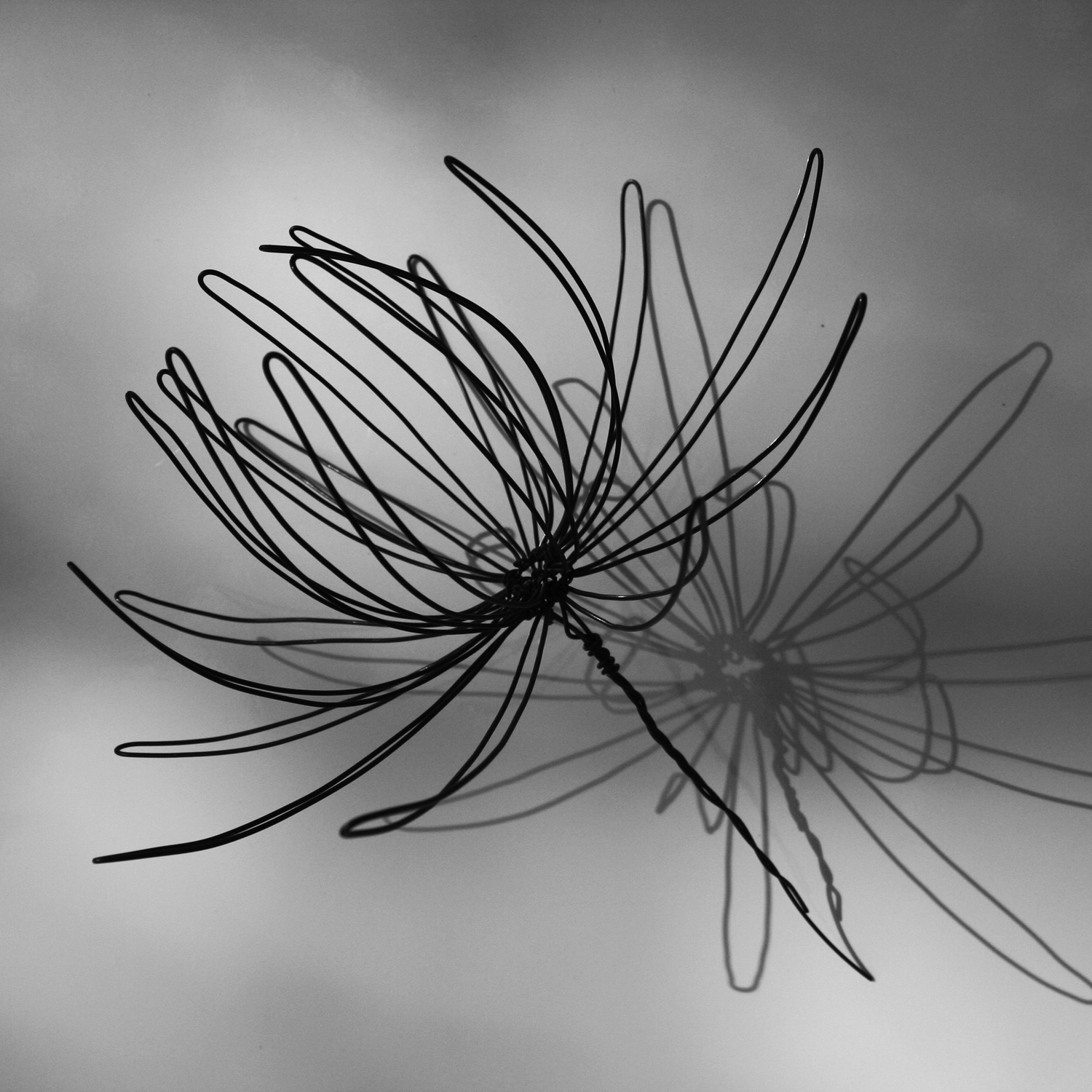 Flowers Wire Sculpture Bing Images