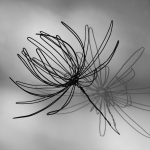 teresa-leung-wire-flower3